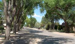 Tree Lined Street in Estancia